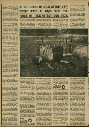 העולם הזה - גליון 2685 - 15 בפברואר 1989 - עמוד 25 | הביצים על הגאז וירדה למכולת. המים בסיר התאדו, קליפות הביצים התפוצצו ועפו לכל עבר. ריח חריף התפשט בכל הבית ונדף עד לחדר־המדרגות. האם שבה מהמכולת, נכנסה בחרדה