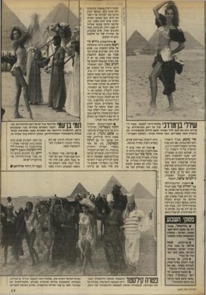 העולם הזה - גליון 2698 - 17 במאי 1989 - עמוד 17 | שירלי בן־מודכי מלכת״היופי לשעבר, בבגד רי קוד על רקע הפירמידות. בן־ מרדכי היא בת לאב יליד קאהיר ולאם ילידת אלכסנדריה. זהו ביקורה השני במצריים, וכבר מזוהה בכינוי