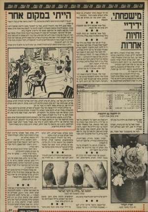 העולם הזה - גליון 2711 - 16 באוגוסט 1989 - עמוד 37   מישפחוזי, ידידיי שיות אחרות חברתי, אשה צעירה ונחמדה, גרושה ואם לשלושה ילדים, עובדת כעיתונאית בעיתון מאוד עני, וככה גם נראית המשכורת שלה. לפני ימים אחדים קיבלה
