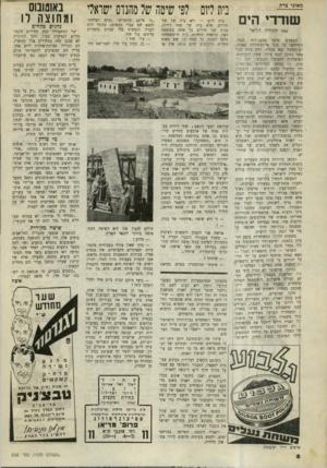 העולם הזה - גליון 638 - 7 בינואר 1950 - עמוד 8 | יתרין חשוב של השיטה היא שאפשר להעסיק בבניה כל עולה חדש, ללא כל ידיעות
