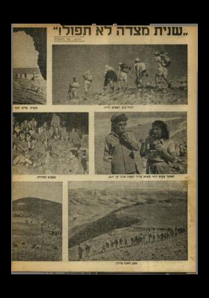 העולם הזה - גליון 650 - 30 במרץ 1950 - עמוד 10 | שנית מצדה לא תפור! צלומים: בנו רותנברג הגדנ״עים יוצאים לדרך. מסע האלף כדרך. מערת