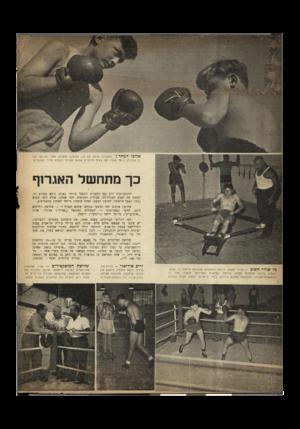 העולם הזה - גליון 657 - 25 במאי 1950 - עמוד 2 | א לו פי המחר ׳1מתתיהו קרנץ, בן 12 מימין) מתגונן מפני אגרופו של דן שטינמן (באה שער) .הם באים למועדון שלוש פעמים בשבוע אחרי השעורים. כך מתחשל האגרוף ההתאגרפות