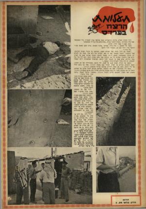 העולם הזה - גליון 727 - 4 באוקטובר 1951 - עמוד 16 | ״מקרה דחוף,״ אמרה ,״איזה איש נהרג על־ידי מסתננים.״ ״ שוב פעם?״ אמר ידידי, ופיהק. … ״זה כרגע תפסנו שני מסתננים.״ הודיעו בתרו עת נצחון . … ״מה היינו עו שים בלי