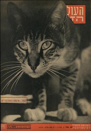העולם הזה - גליון 746 - 14 בפברואר 1952