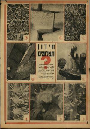 העולם הזה - גליון 784 - 6 בנובמבר 1952 - עמוד 16 | שמונה התמונות המופיעות כעמוד זה מראות לך עצמים וחלקיים המוכרים! לך היטב, אשר אתה בא ״כמגע אתם כמעט יופ-יום. רק הזויות, הגדלים או המצבים מובאים בצורה