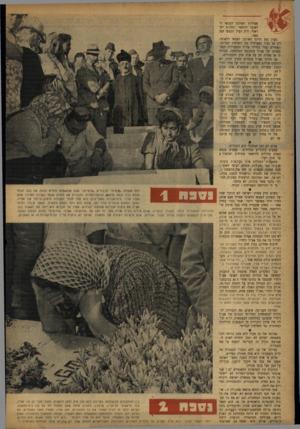 העולם הזה - גליון 840 - 26 בנובמבר 1953 - עמוד 4   האחרים נפלו כחיילי צה״ל ובפעולות העצמאיות של אצ״ל בתקופת המלחמה. בצורה זו או אחרת חל על אלה חוק התגמולים. 58 הרוגי אצ״ל עומדים מחוץ לחוק. … חוק זה לא נתן לשר