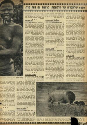 העולם הזה - גליון 963 - 29 במרץ 1956 - עמוד 10 | 7 6500 ן ילומם ךים של חופתקות, נגישות עם חיות טוו, וקריאות חיות הפריעו את השקט האינסופי. ארבעה ימים ארך המסע עד נמל מסינרי. בדרך, נתקענו משך 27 שעות רצופות