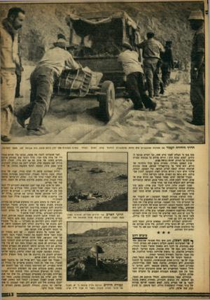 העולם הזה - גליון 996 - 14 בנובמבר 1956 - עמוד 13 | חדרו חיחידח לעכור את החולות הטובעניים היא לרדת מהמכוניות ולדחוף סוף סוף כי הצליח לאתר סיים אחד, וכי הטייס מנופף לו בידים. לפתע נצבט הלב: הירש מודיע כי מכונית